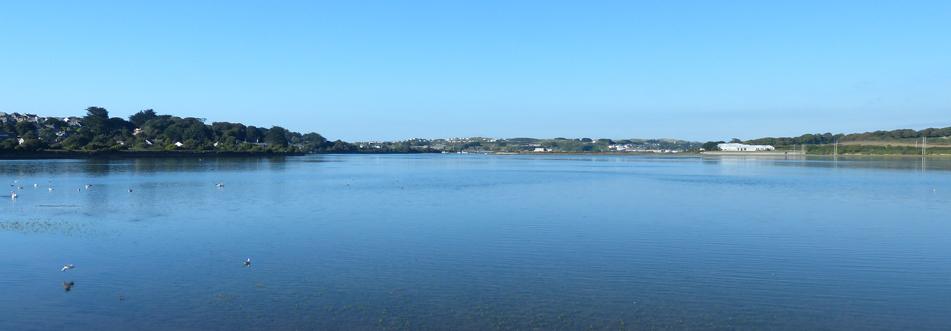 Hayle Estuary View