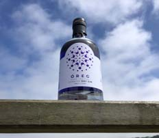 Cornish Gin